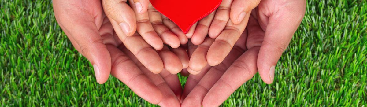 heart shape family member's hands holding
